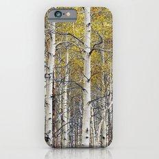 Birch Trees in Autumn Slim Case iPhone 6s