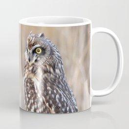 Portrait of a Short-Eared Owl Coffee Mug