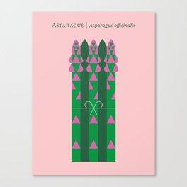 Vegetable: Asparagus Canvas Print