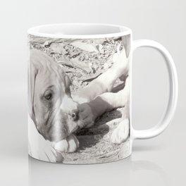 Boxer puppy resting Coffee Mug