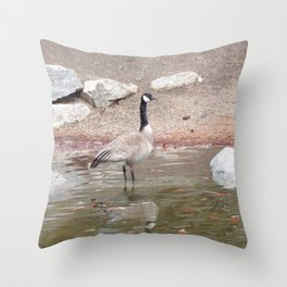 Majestic Fellow, Beautiful Canadian Goose On Pond,Wildlife Throw Pillow