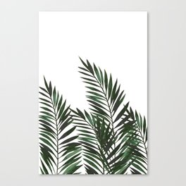 Palm Leaves Green Canvas Print