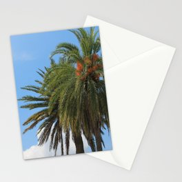 Palm Trees of Florida Stationery Cards