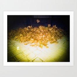 Apología del otoño Art Print