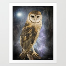 Wise Old Owl - Image Art Art Print