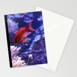 Lonely Fish Stationery Cards