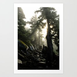 Foggy Footpath Art Print