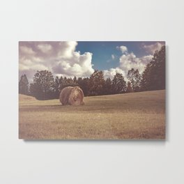 Hay You Metal Print