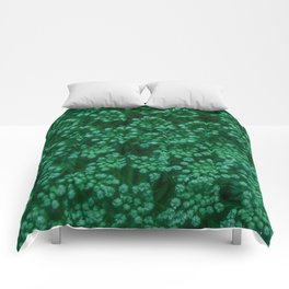 Green Queen Anne's Lace (Up Close) Comforters