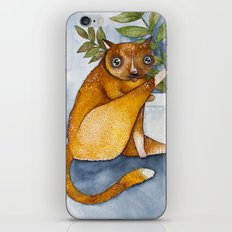 Ginger Cat iPhone & iPod Skin
