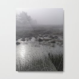 Winter forest 2 Metal Print