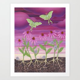 echinacea daydream with luna moths and snails Art Print