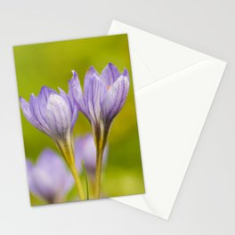Crocus in the Autumn Stationery Cards