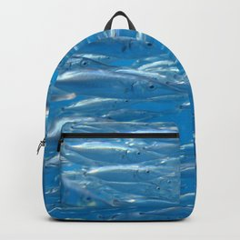 Fish shoal of common bellowsfish Backpack