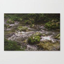 Wild slovenija Canvas Print