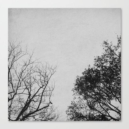 2 Trees (Grey) Canvas Print
