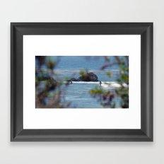 Leo Days Framed Art Print
