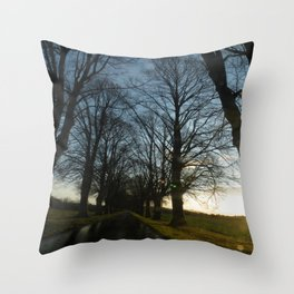 Allee Throw Pillow