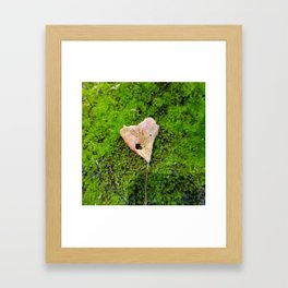 Steal my heart Framed Art Print