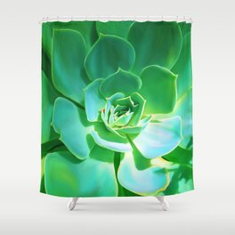 GREEN SUCCULENT Shower Curtain