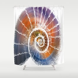The Nautilus shell  Transparent Shower Curtain