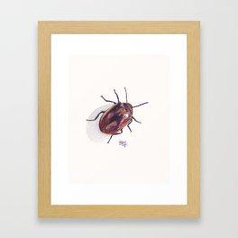 Beetle in my Garden Framed Art Print