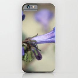 Canterbury Bell 2 Coachella Wildlife Preserve iPhone Case