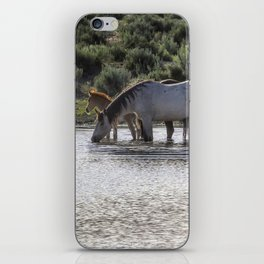 Reaching the Waterhole iPhone Skin