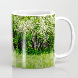 Mother horse with little foal Coffee Mug
