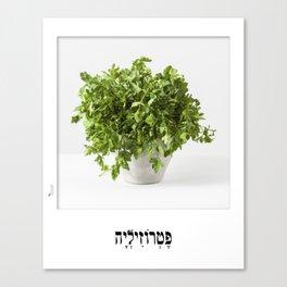 parsley herbal planter poster Canvas Print