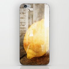 Citrus iPhone & iPod Skin