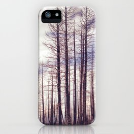 Highland Ponderosas iPhone Case