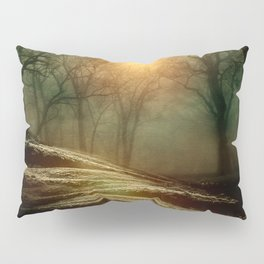 From small beginnings and big endings. by Viviana González Pillow Sham
