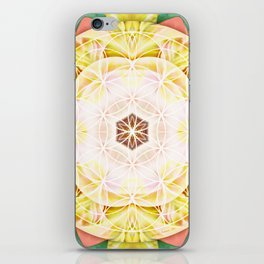 Flower of Life Mandalas 7 iPhone Skin