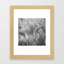 High Grass (In The Thick of It) Framed Art Print