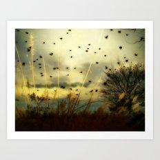 Bird Sunset Art Print