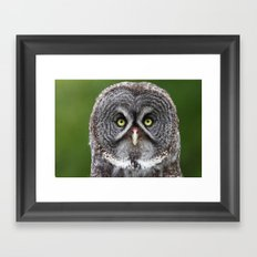 Give a Hoot Framed Art Print