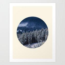 Winter Pine Trees Round Photo Art Print