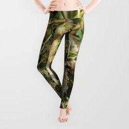The frog Leggings