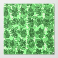 Green Leaves Canvas Print