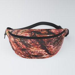 Petrified Tree Rings Fanny Pack