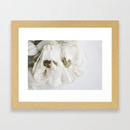 MOMENTO MORI ROSES II Framed Art Print