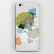 Graphic 119 iPhone & iPod Skin