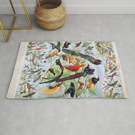 Adolphe Millot - Oiseaux B - French vintage poster Rug