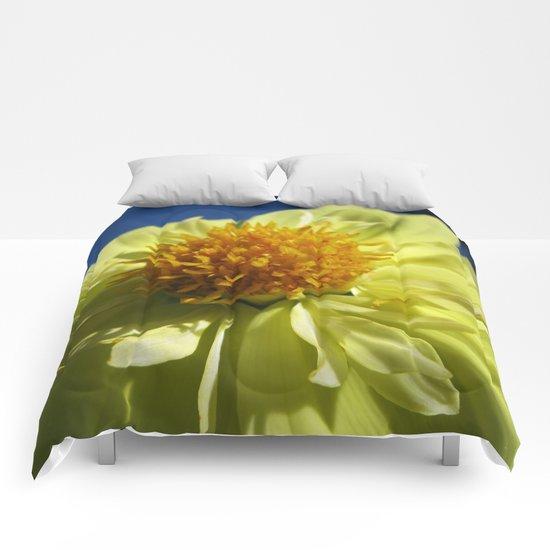 Dahlia 14 Comforters