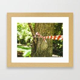 Tape Around A Tree Framed Art Print