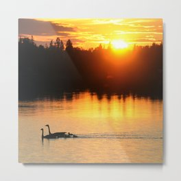 Canada Geese Family Sunset Metal Print