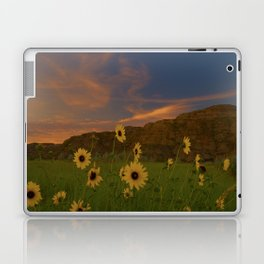 Helios Anthos Laptop & iPad Skin