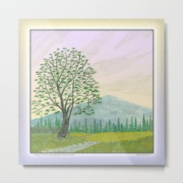 OREGON ASH TREE IN SPRINGTIME VINTAGE PENCIL COLOR DRAWING Metal Print