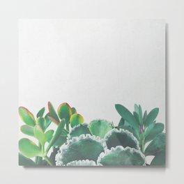 Plant Trio Metal Print